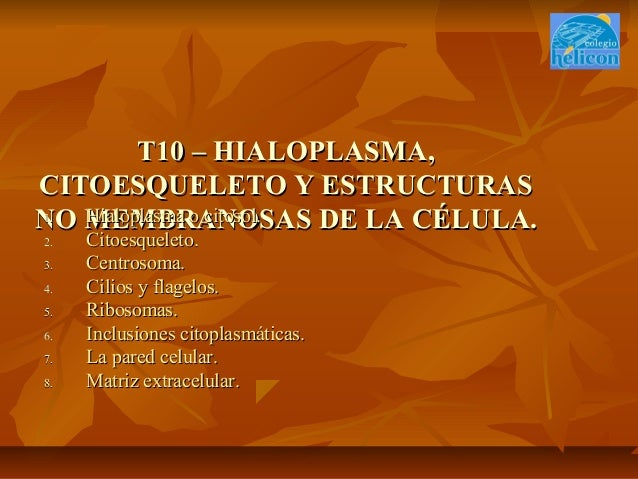 T10 – HIALOPLASMA,T10 – HIALOPLASMA, CITOESQUELETO Y ESTRUCTURASCITOESQUELETO Y ESTRUCTURAS NO MEMBRANOSAS DE LA CÉLULA.NO...