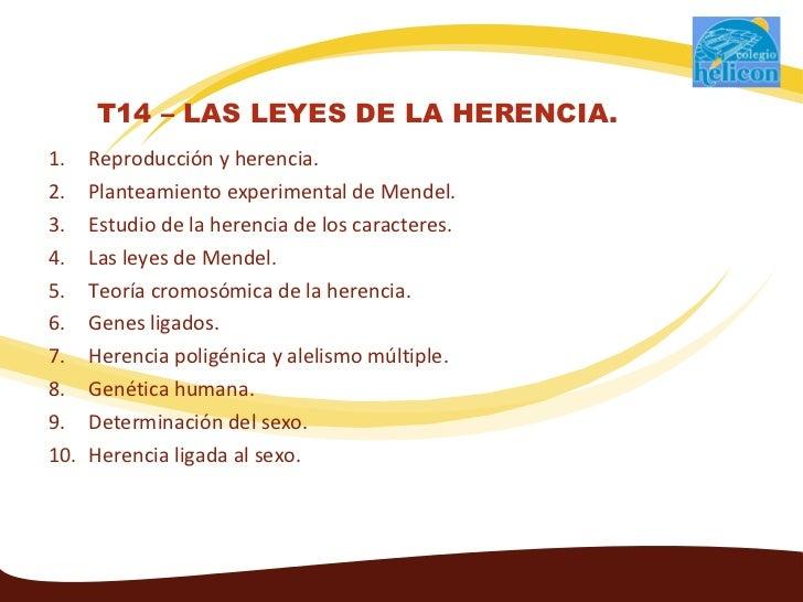 T14 - Las leyes de la herencia.