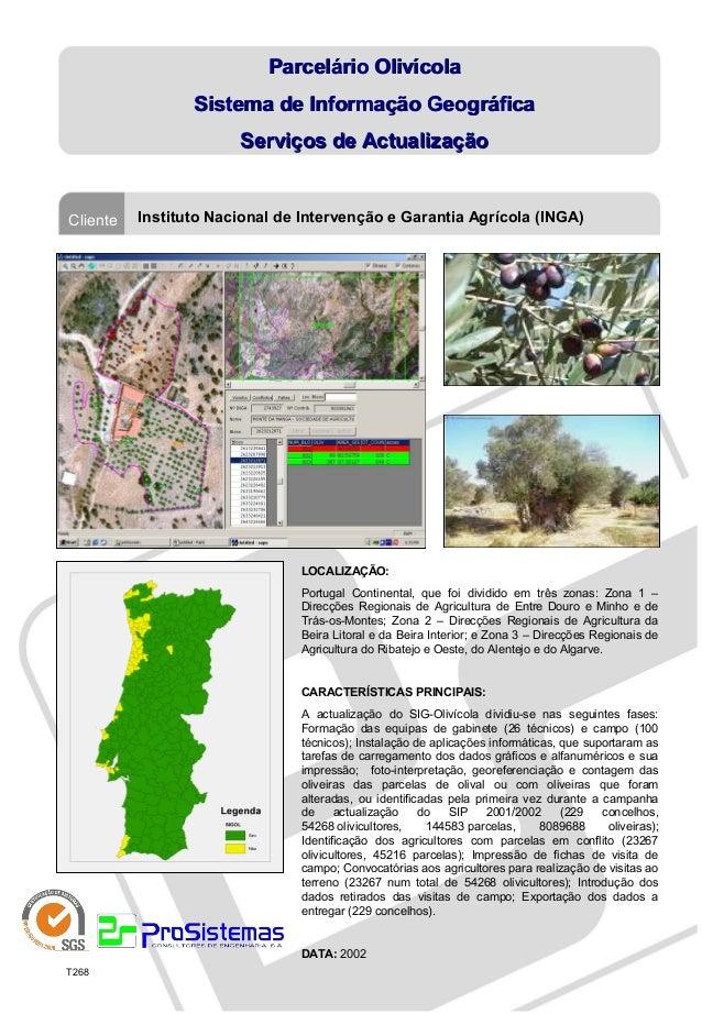 Parcelário Olivícola                 Sistema de Informação Geográfica                       Serviços de ActualizaçãoClient...