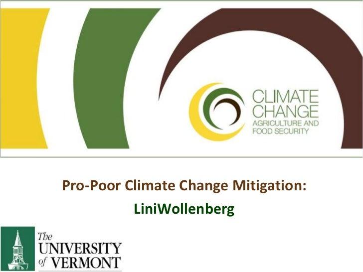 Pro-Poor Climate Change Mitigation: <br />LiniWollenberg<br />
