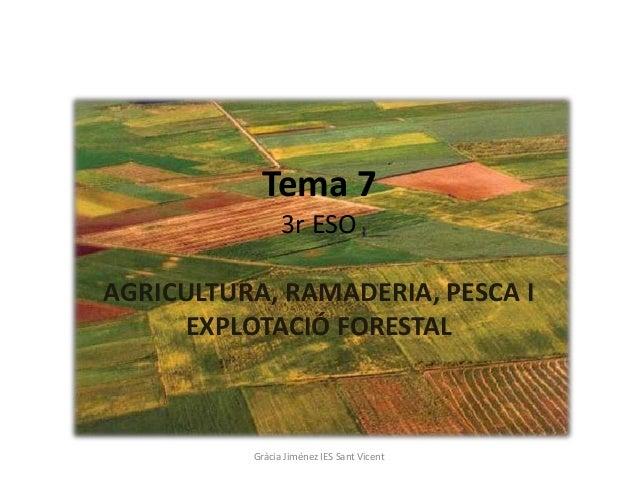 Tema 7                3r ESOAGRICULTURA, RAMADERIA, PESCA I     EXPLOTACIÓ FORESTAL          Gràcia Jiménez IES Sant Vicent