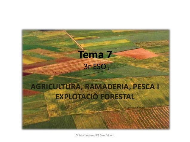 T 7 sector primari