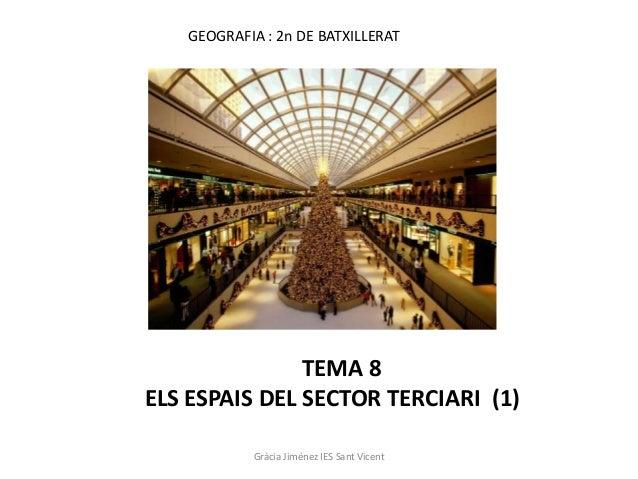 GEOGRAFIA : 2n DE BATXILLERAT               TEMA 8ELS ESPAIS DEL SECTOR TERCIARI (1)           Gràcia Jiménez IES Sant Vic...