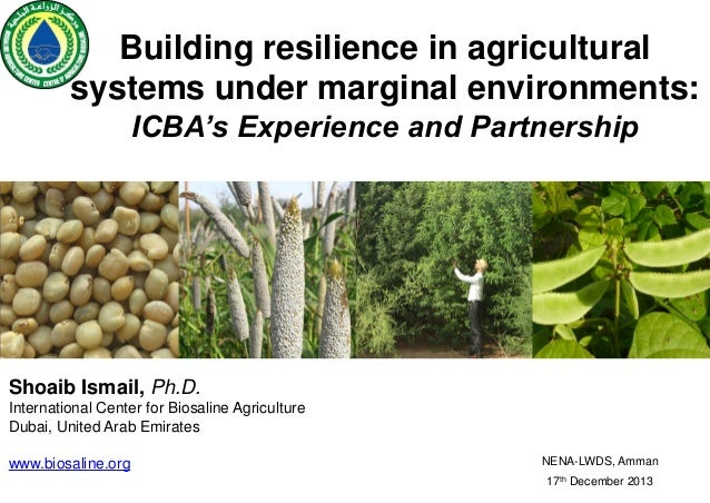 Building resilience in agricultural systems under marginal environments: ICBA's Experience and Partnership  Shoaib Ismail,...