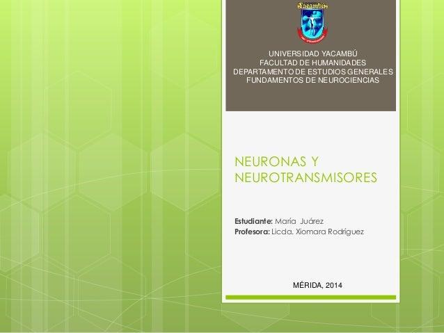 NEURONAS Y NEUROTRANSMISORES Estudiante: María Juárez Profesora: Licda. Xiomara Rodríguez UNIVERSIDAD YACAMBÚ FACULTAD DE ...