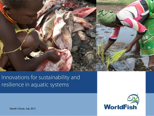 Innovations for sustainability and resilience in aquatic systems Tabeth Chiuta, July 2013