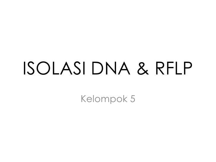 ISOLASI DNA & RFLP      Kelompok 5