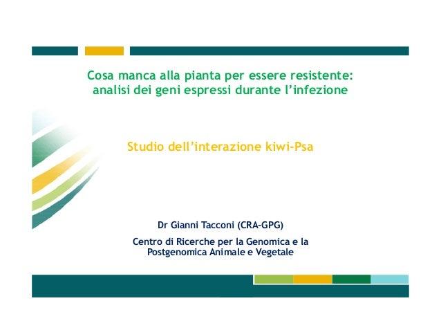 Cosa manca alla pianta per essere resistente: analisi dei geni espressi durante l'infezione  Studio dell'interazione kiwi-...