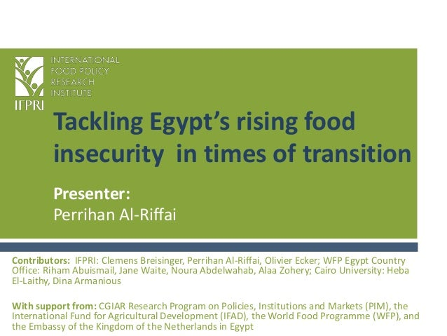 Tackling Egypt's rising food insecurity in times of transition