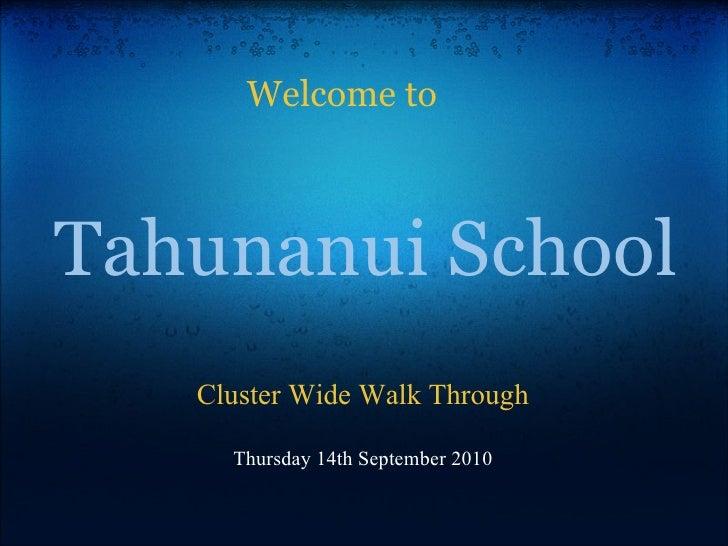 Tahunanui cluster walk_through (1)