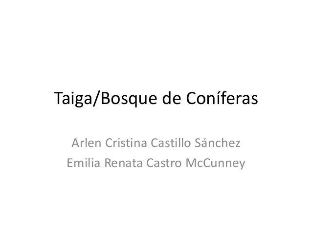 Taiga/Bosque de Coníferas  Arlen Cristina Castillo Sánchez  Emilia Renata Castro McCunney