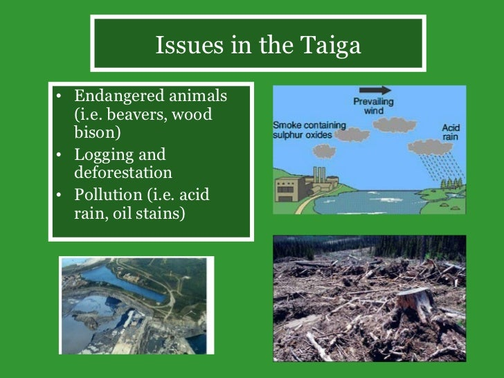 an introduction to the issue of endangered species in canada Other issues endangered species latest news the introduction of non-native species and the release of toxic chemicals into proposed canada endangered.