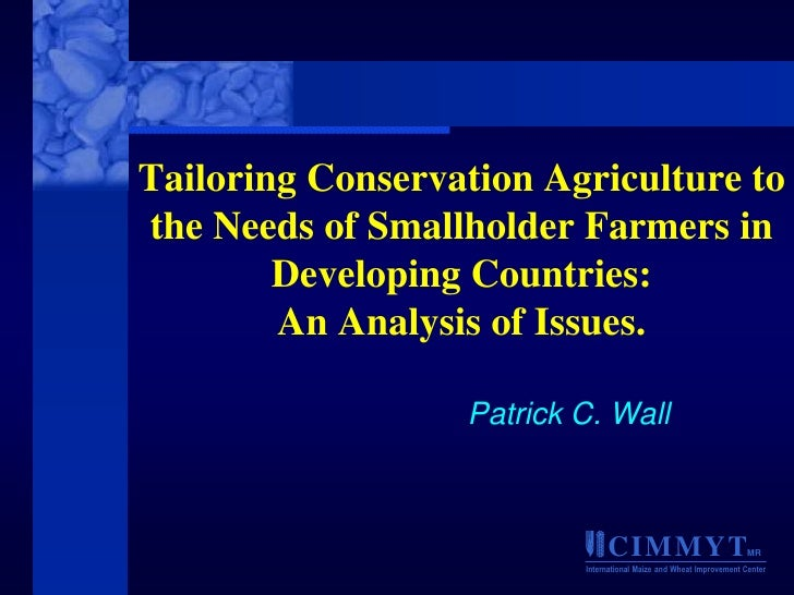 Tailoring Conservation Agriculture tothe Needs of Smallholder Farmers in        Developing Countries:        An Analysis o...