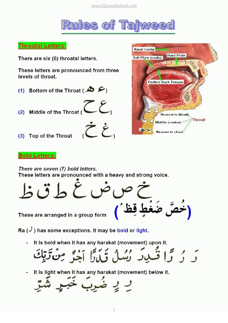 Tajweed Rules -:- Learn Quran with Basic Rules of Tajweed - Learn Bold ...