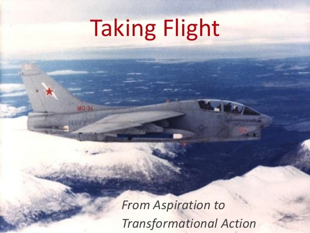 Taking Flight  From Aspiration to Transformational Action