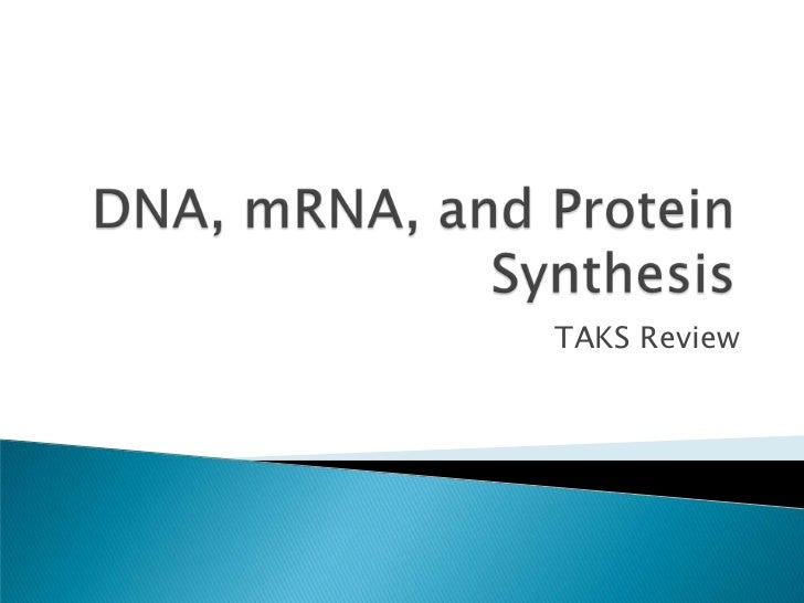 DNA, mRNA, and Protein Synthesis<br />TAKS Review<br />