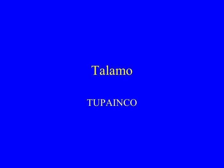 Talamo  TUPAINCO
