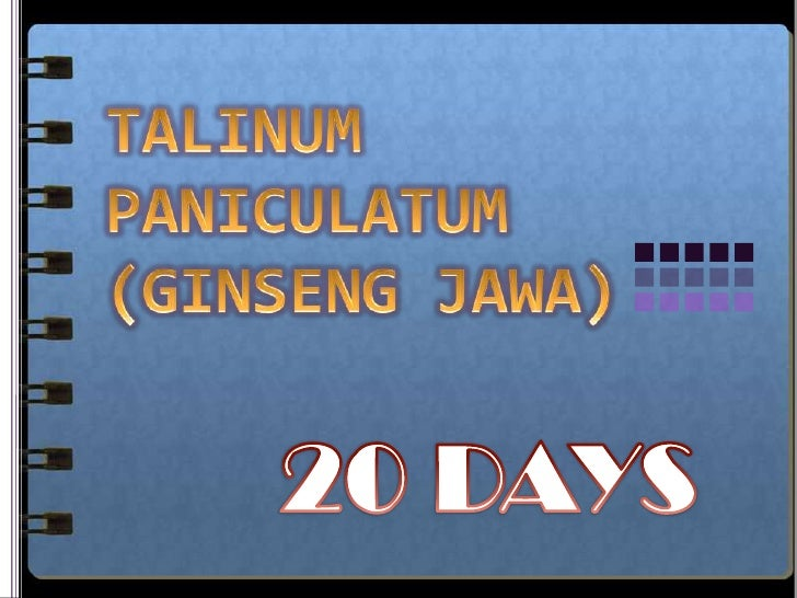 Talinum paniculatum