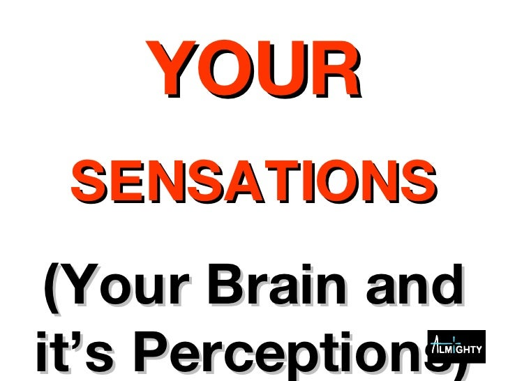 YOUR SENSATIONS (Your Brain and it's Perceptions)