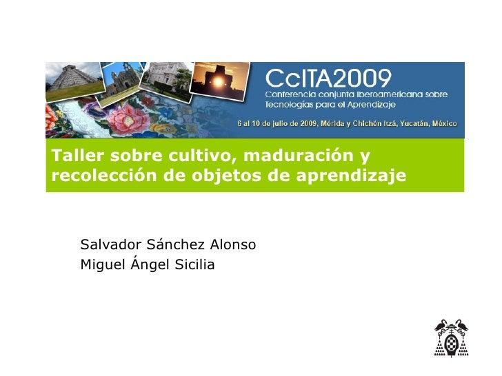 Taller sobre cultivo, maduración y recolección de objetos de aprendizaje       Salvador Sánchez Alonso    Miguel Ángel Sic...