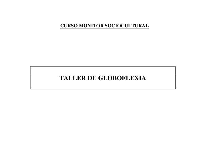CURSO MONITOR SOCIOCULTURAL     TALLER DE GLOBOFLEXIA