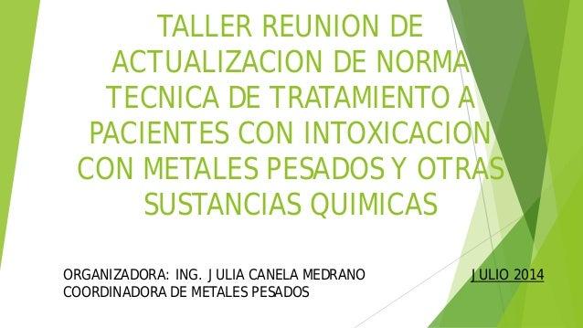 TALLER REUNION DE ACTUALIZACION DE NORMA TECNICA DE TRATAMIENTO A PACIENTES CON INTOXICACION CON METALES PESADOS Y OTRAS S...