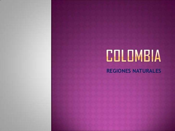 Taller 1 REGIONES NATURALES DE COLOMBIA