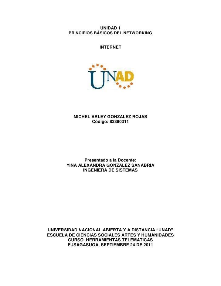 UNIDAD 1        PRINCIPIOS BÁSICOS DEL NETWORKING                    INTERNET          MICHEL ARLEY GONZALEZ ROJAS        ...