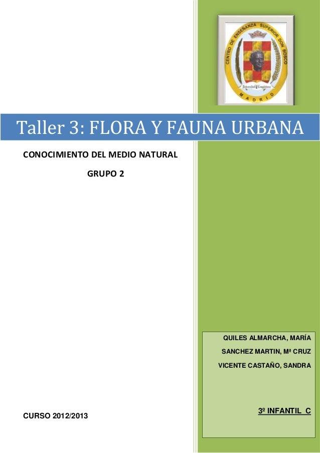 Taller 3: FLORA Y FAUNA URBANACONOCIMIENTO DEL MEDIO NATURAL              GRUPO 2                                  QUILES ...