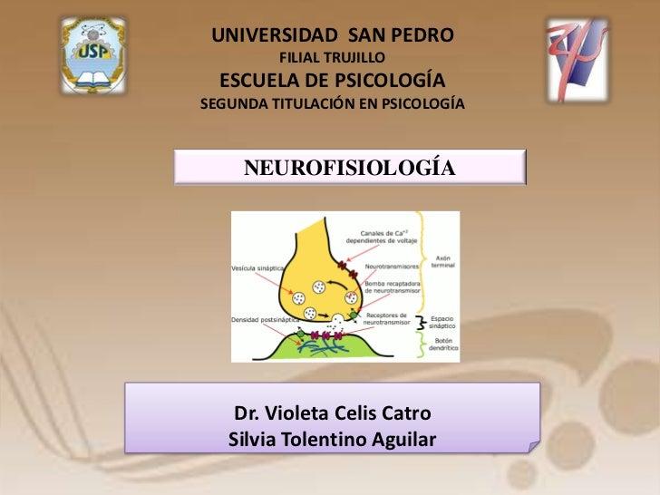 UNIVERSIDAD SAN PEDRO         FILIAL TRUJILLO  ESCUELA DE PSICOLOGÍASEGUNDA TITULACIÓN EN PSICOLOGÍA     NEUROFISIOLOGÍA  ...