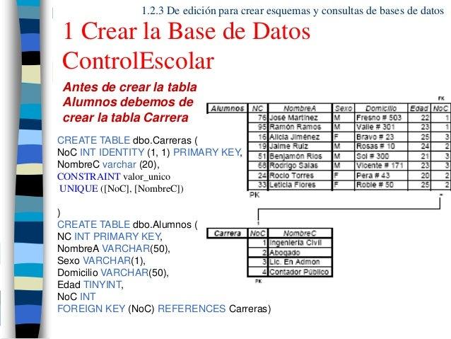 manuales de taller base de datos.