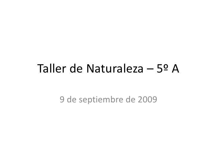 Taller de Naturaleza – 5º A<br />9 de septiembre de 2009<br />