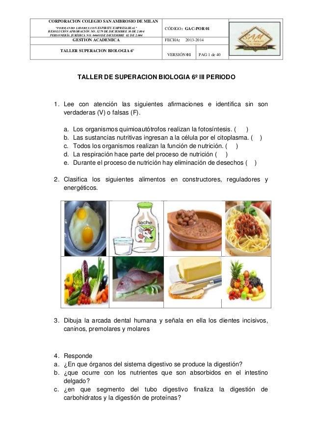TALLER DE SUPERACION BIOLOGIA 6º III PERIODO 1. Lee con atención las siguientes afirmaciones e identifica sin son verdader...