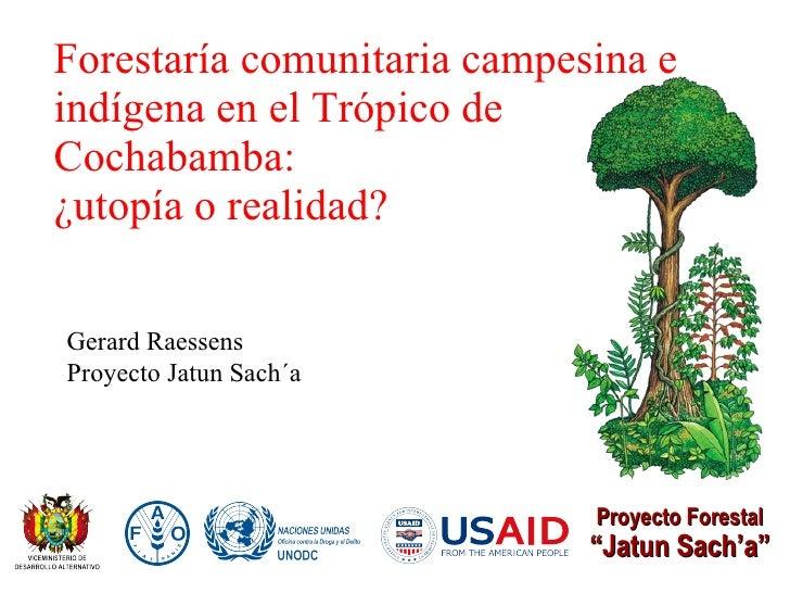 """Forestaría comunitaria campesina e indígena en el Trópico de Cochabamba: ¿utopía o realidad? Proyecto Forestal """" Jatun Sac..."""