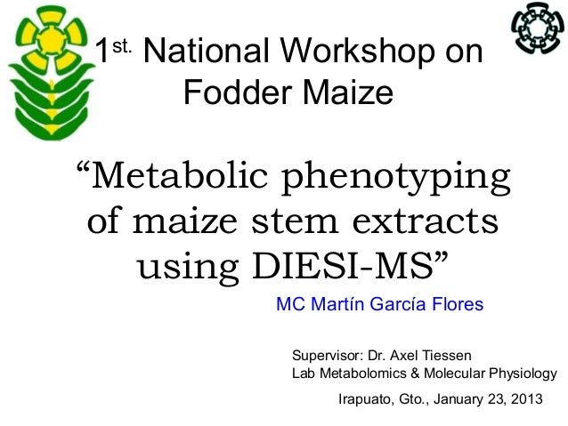 "1st. National Workshop on       Fodder Maize""Metabolic phenotyping of maize stem extracts    using DIESI-MS""           MC ..."