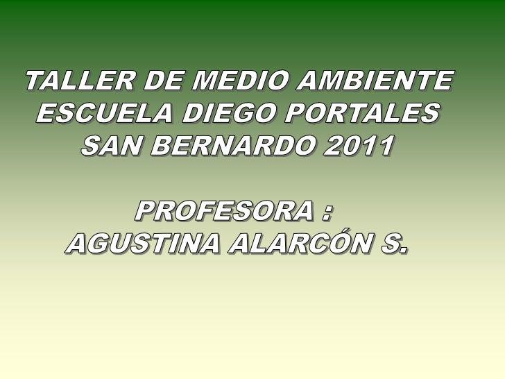• PLANTAR NUEVAS ESPECIES EN  PATIOS DE PRE BÁSICA