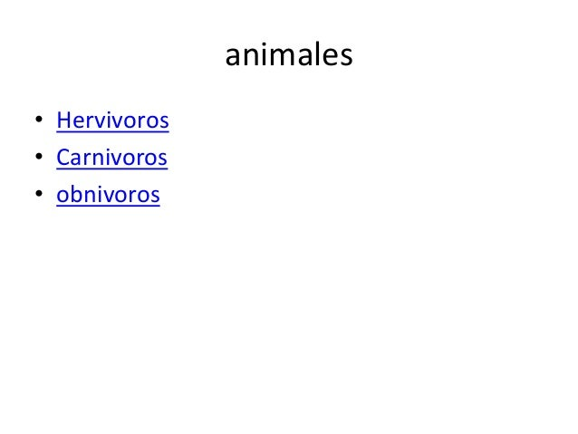 animales • Hervivoros • Carnivoros • obnivoros