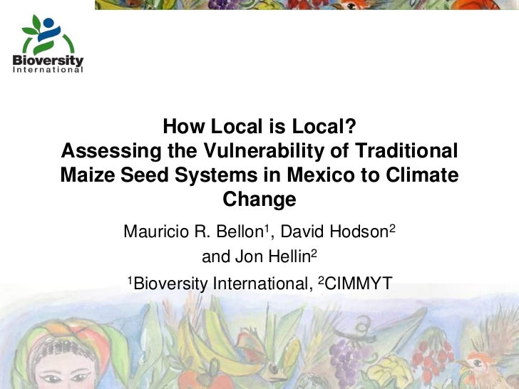 How Local is Local?Assessing the Vulnerability of TraditionalMaize Seed Systems in Mexico to Climate               Change ...