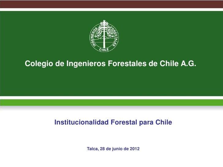 Colegio de Ingenieros Forestales de Chile A.G.       Institucionalidad Forestal para Chile                 Talca, 28 de ju...