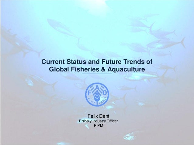 Current Status and Future Trends of Global Fisheries & Aquaculture  Felix Dent Fishery Industry Officer FIPM