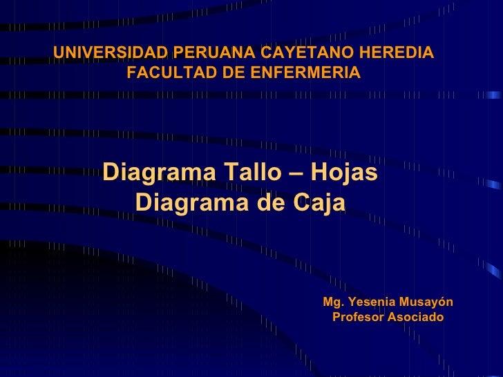 UNIVERSIDAD PERUANA CAYETANO HEREDIA FACULTAD DE ENFERMERIA Diagrama Tallo – Hojas Diagrama de Caja Mg. Yesenia Musayón Pr...