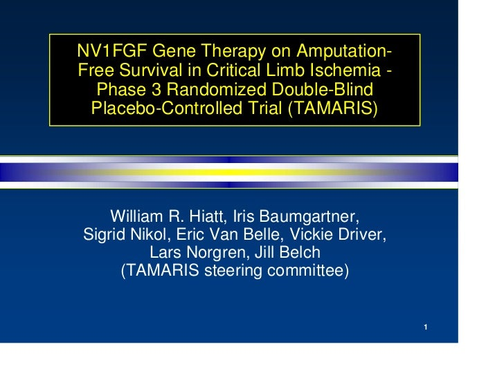 NV1FGF Gene Therapy on Amputation- Free Survival in Critical Limb Ischemia -   Phase 3 Randomized Double-Blind  Placebo-Co...