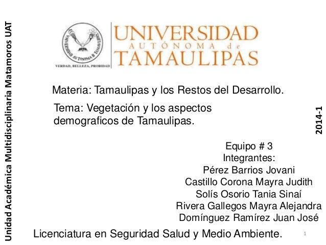 Tamaulipas y su vegetación.