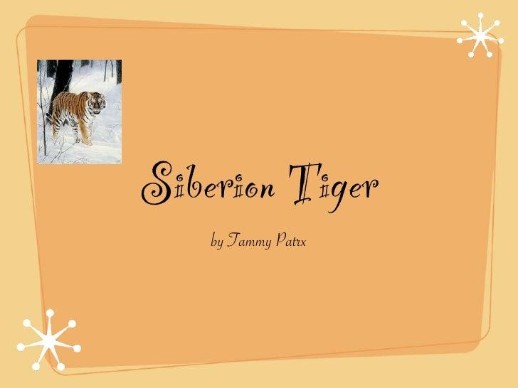 Siberion Tiger     by Tammy Patrx
