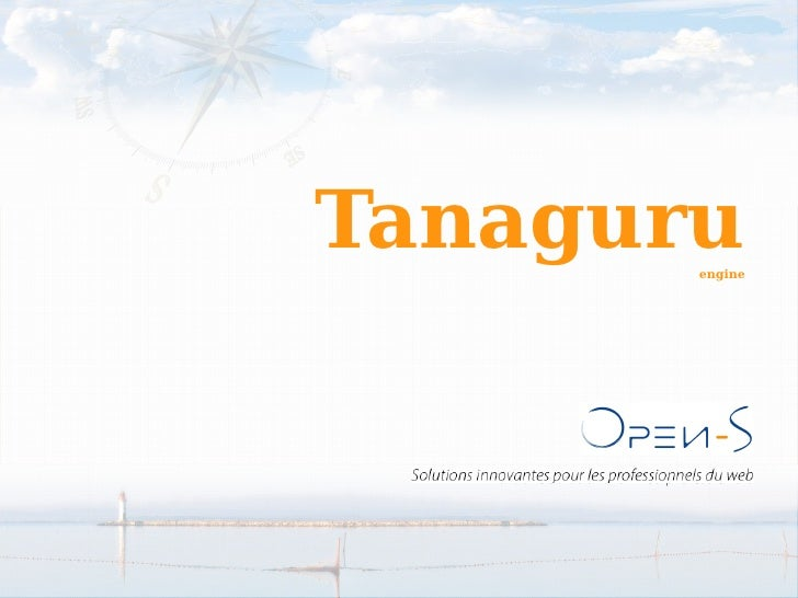 Tanaguru RMLL 2010 (French)
