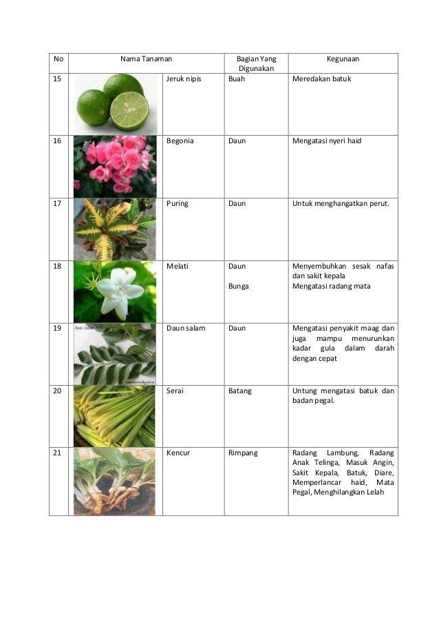 daftar nama obat kortikosteroid