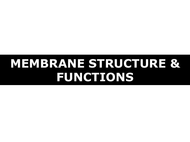 MEMBRANE STRUCTURE & FUNCTIONS
