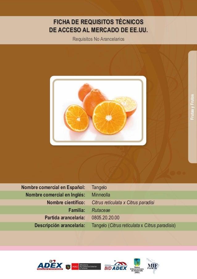 Tangelo Minneolla Citrus reticulata x Citrus paradisi Rutaceae 0805.20.20.00 Tangelo (Citrus reticulata x Citrus paradisis...
