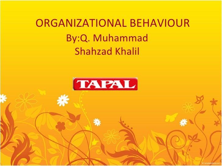 ORGANIZATIONAL BEHAVIOUR    By:Q. Muhammad      Shahzad Khalil