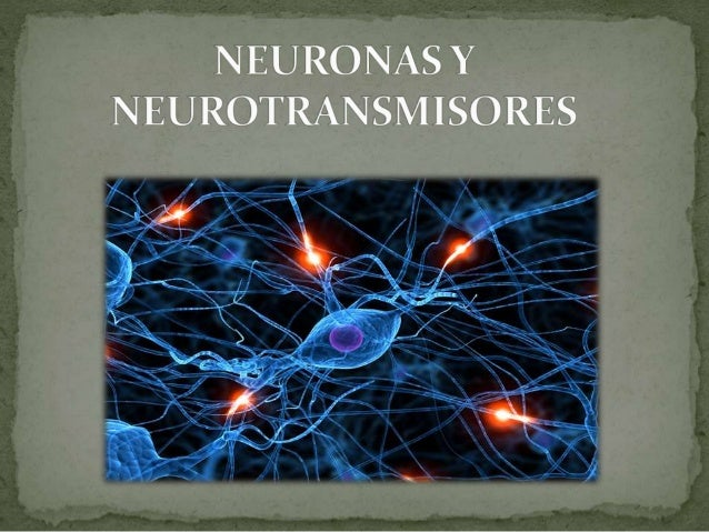 El sistema nervioso es un sistema en extremo importante. Gracias a su funcionamiento integrado, el hombre tiene conciencia...